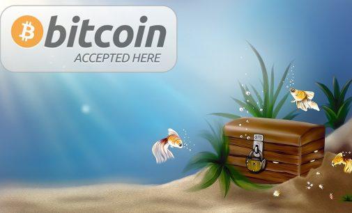 Islands Piratenpartei könnte den Weg für Bitcoin ebnen