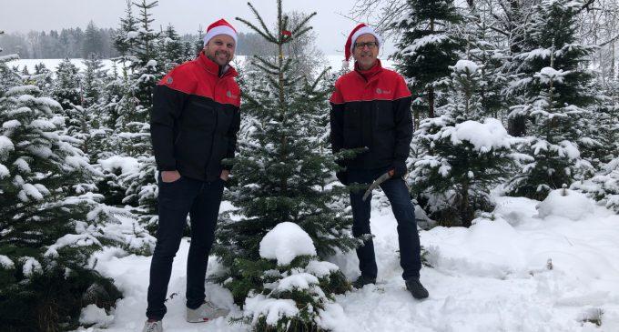 DPD Schweiz hat 500 Weihnachtsbäume verlost und den Gewinnern nach Hause geliefert