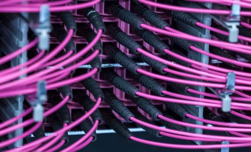 D29 Big Divider: Grösster Kabelaufteiler für Netscale-Assemblies