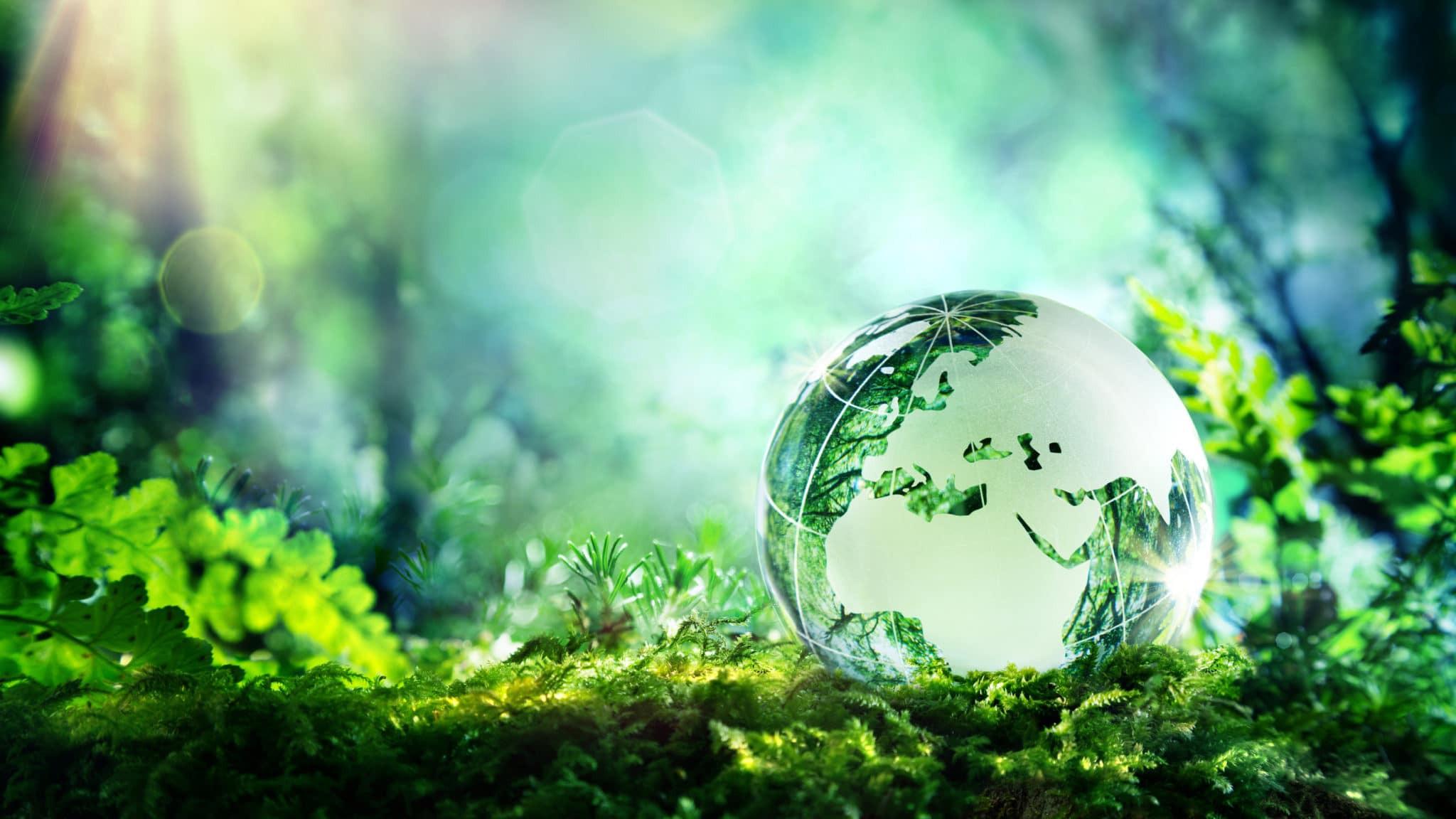 Neuer Nachhaltigkeitsbericht des Verkabelungsherstellers R&M publiziert. Pandemie-Jahr solide gemeistert. Nur wenige Covid-19-Fälle. Weniger Verpackungen und Transporte.